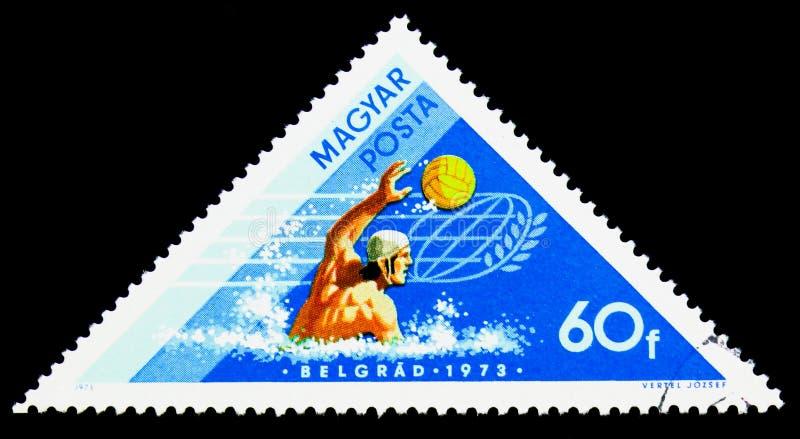 Polo aquático, vitórias húngaras em esportes de água em Tampere e B imagens de stock royalty free