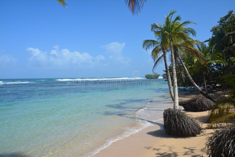 Polo Beach na ilha de Bastimentos no del Toro Panamá de Bocas fotos de stock royalty free