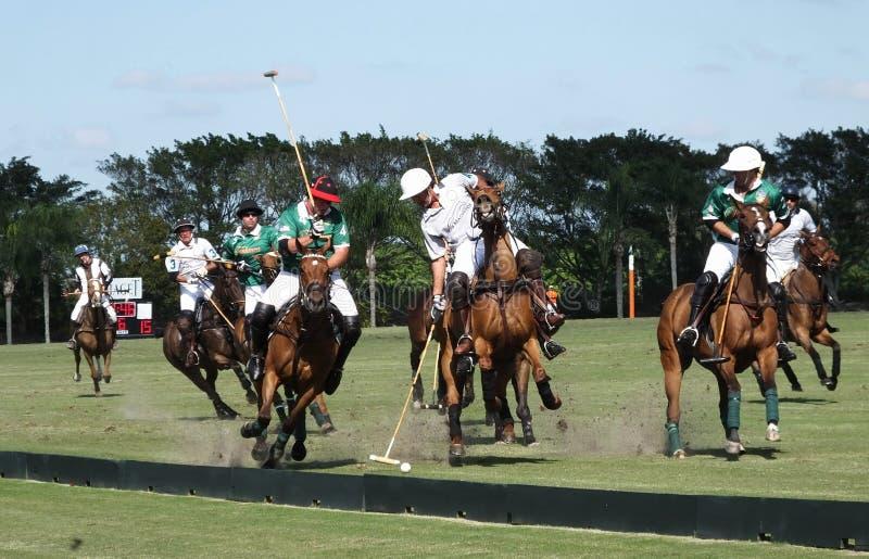 Polo Club internacional - Wellington, Florida - Joe fotografia de stock