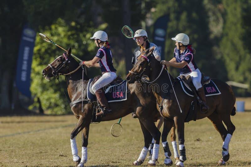 Polo-Cross Players Horses stock photos