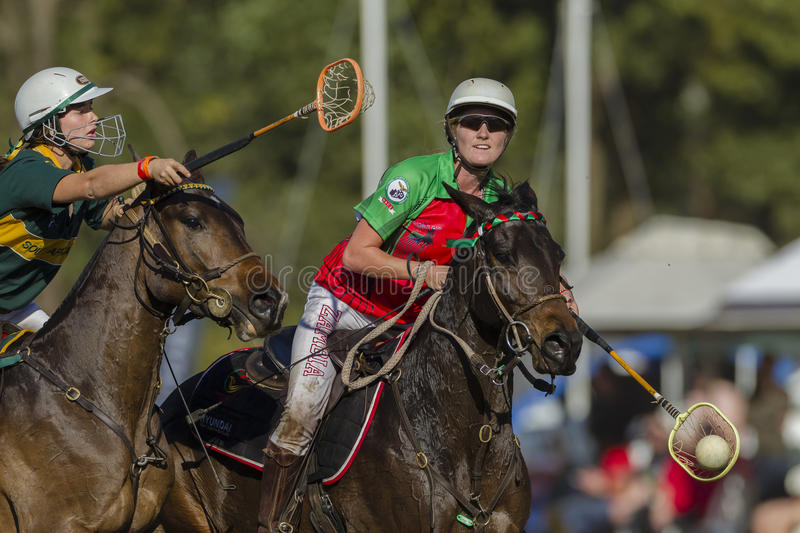 Polo-Cross Women Action royalty free stock photography