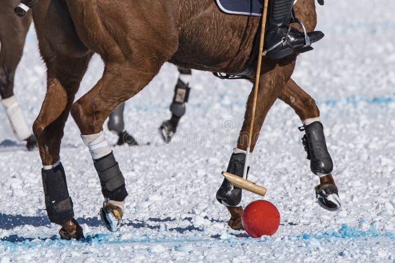 Polo de neige photographie stock libre de droits