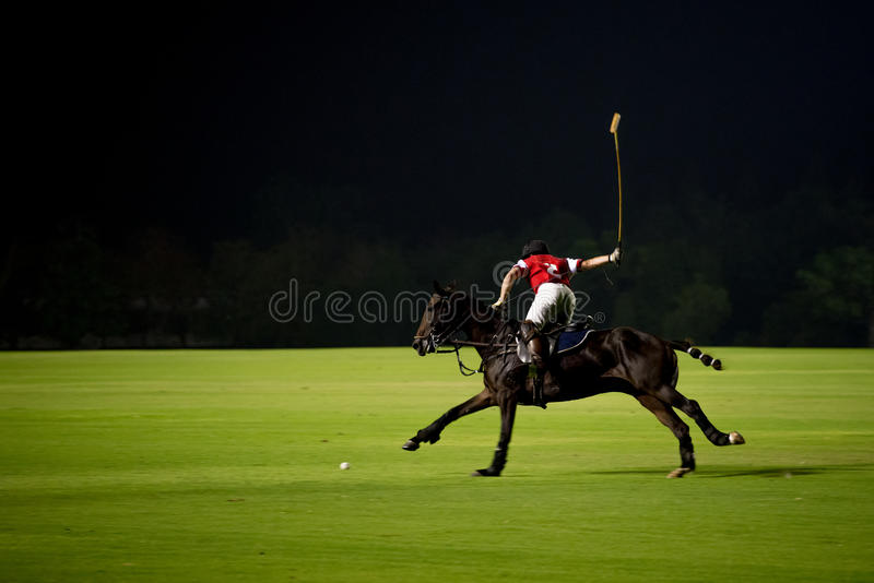Polo de nuit image libre de droits
