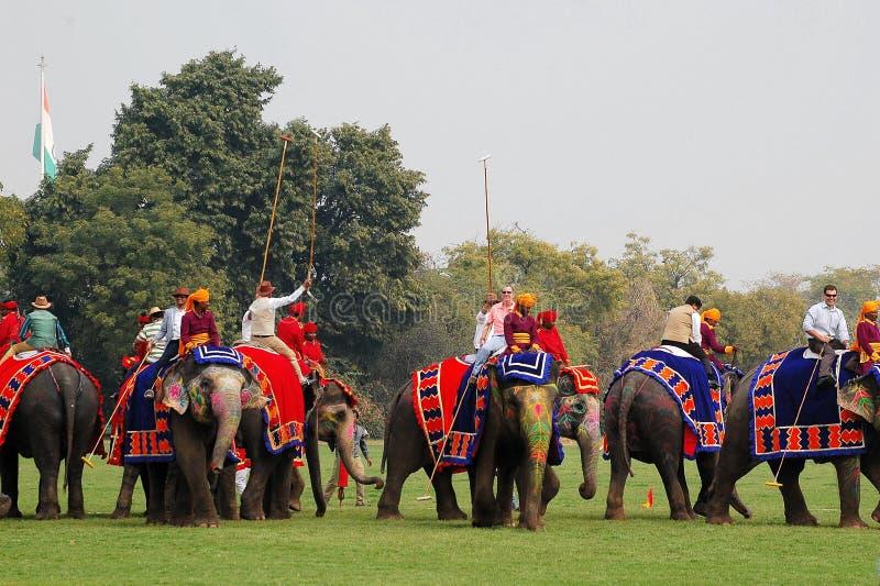 Polo do elefante fotografia de stock royalty free