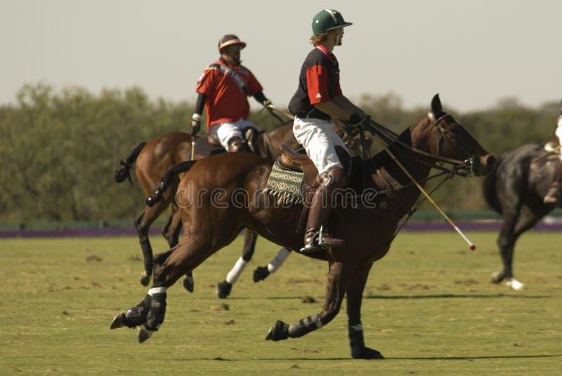 Polo Match stock photography
