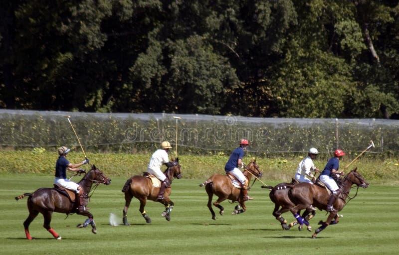 Polo match stock photos