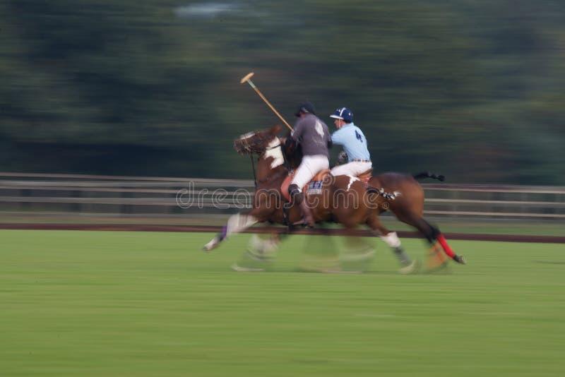 Polo Match royaltyfri fotografi