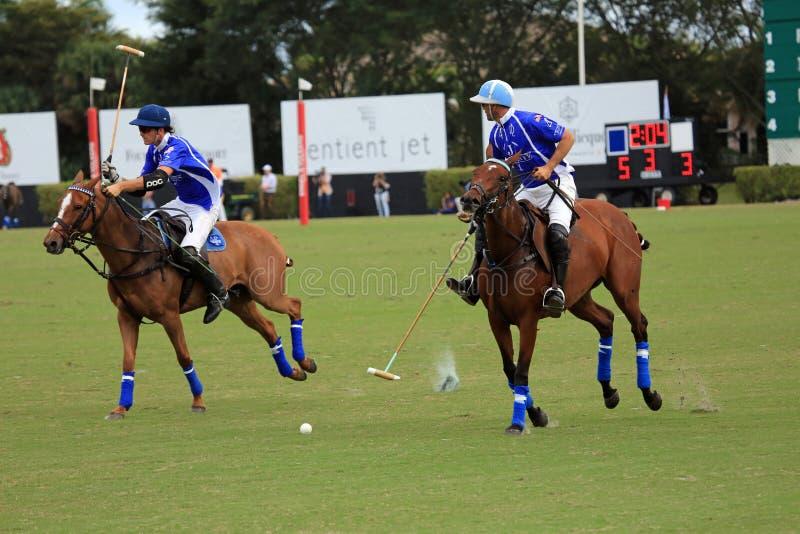 Polo Match stock foto's