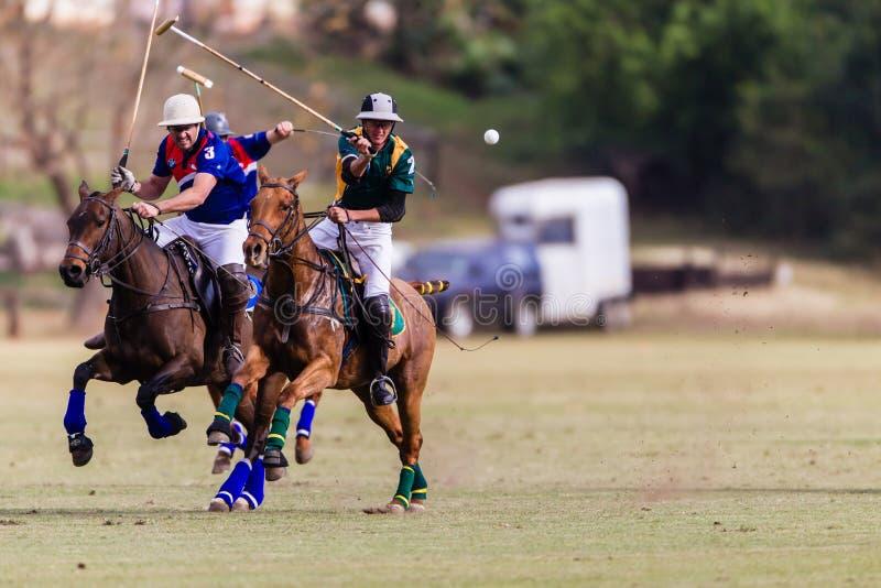 Polo Match Chasing Ball Action photographie stock libre de droits