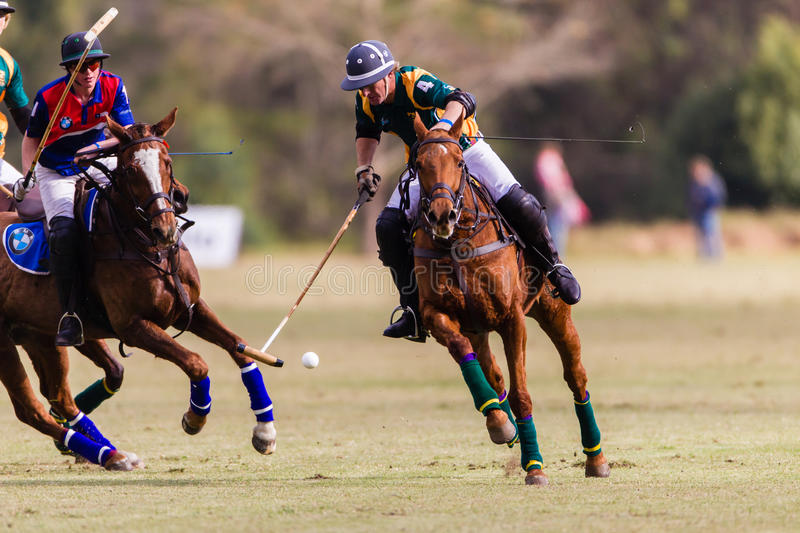 Polo Match Chile South-Africa Action royaltyfri fotografi