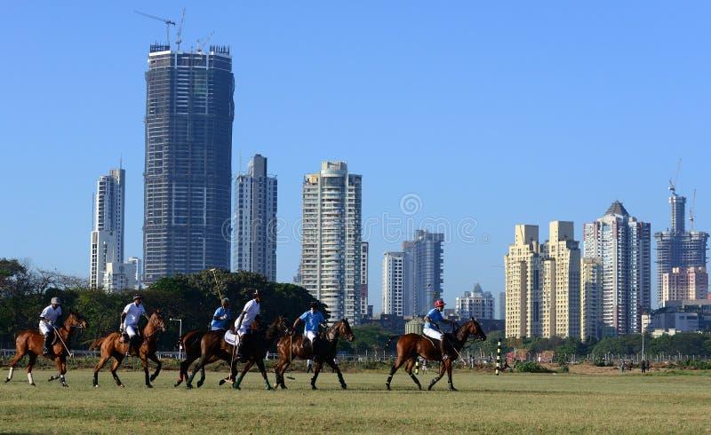 Polo In Mumbai royaltyfria foton