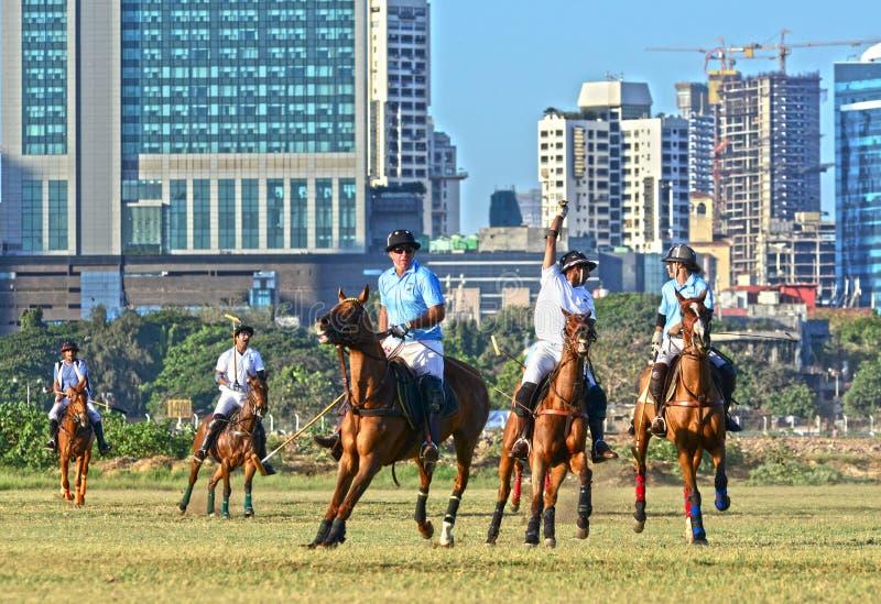 Polo In Mumbai royaltyfri fotografi