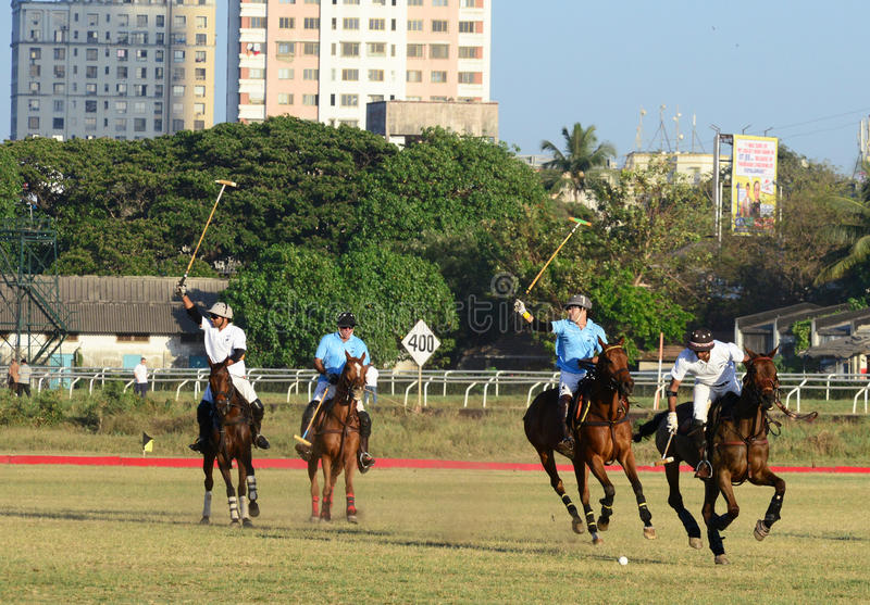 Polo In Mumbai arkivbild