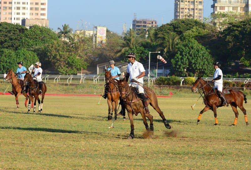 Polo In Mumbai arkivbild