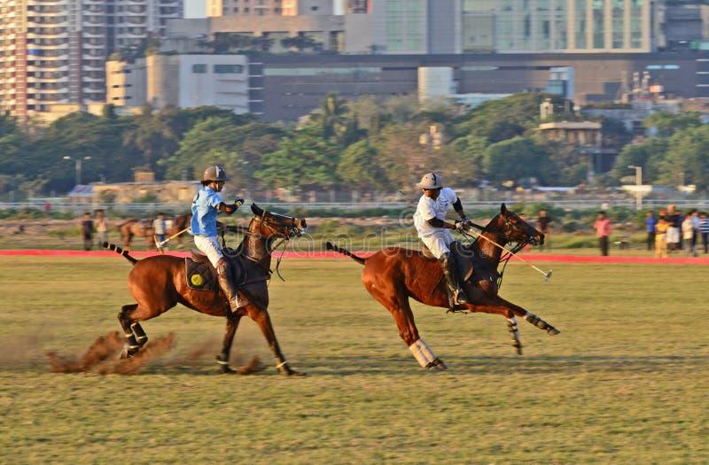 Polo In Mumbai royaltyfria bilder
