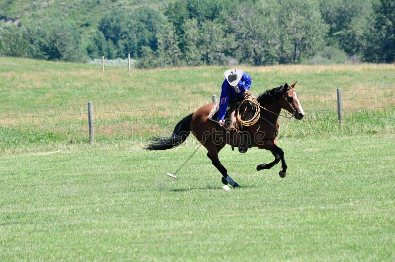 Polo på ranchen för stång U, royaltyfria bilder