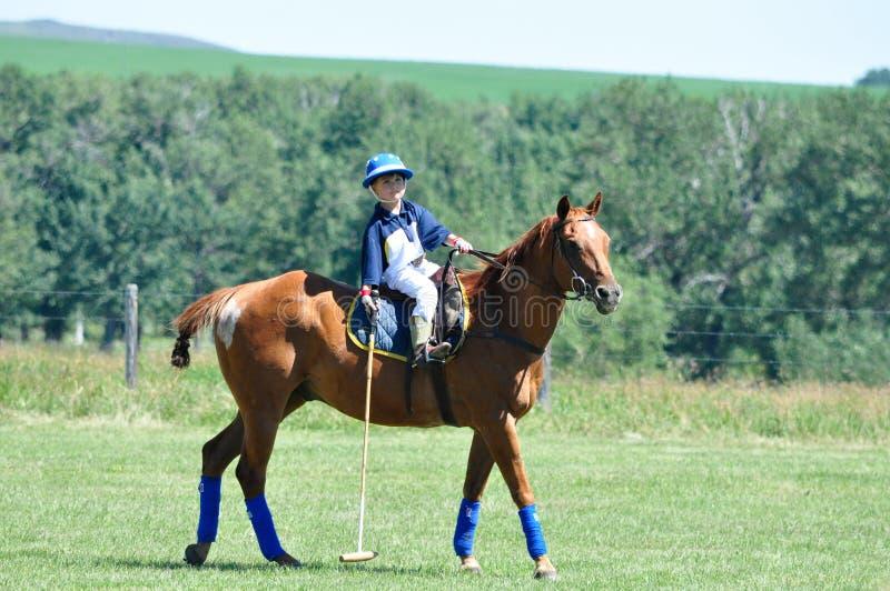 Polo på ranchen för stång U, royaltyfri bild