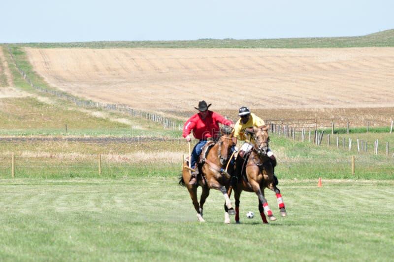 Polo på ranchen för stång U arkivbilder