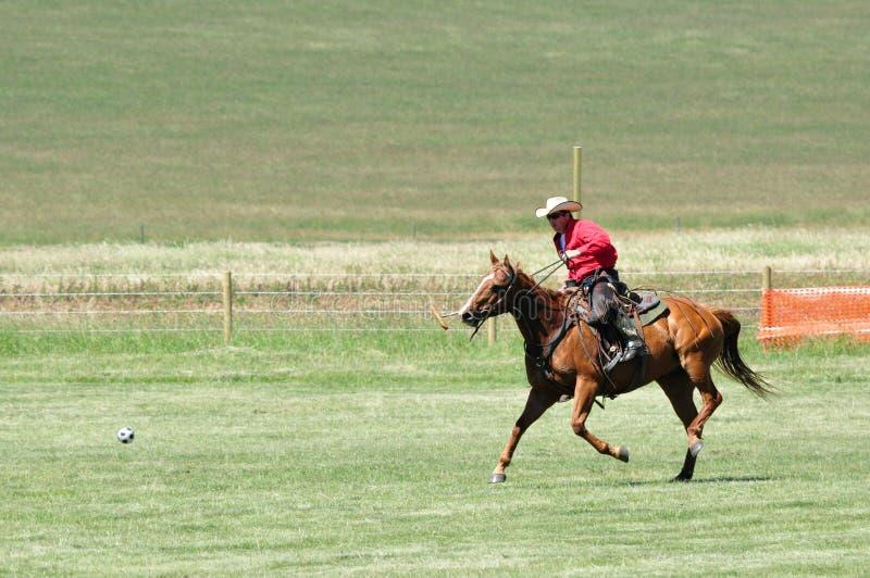 Polo på ranchen för stång U fotografering för bildbyråer