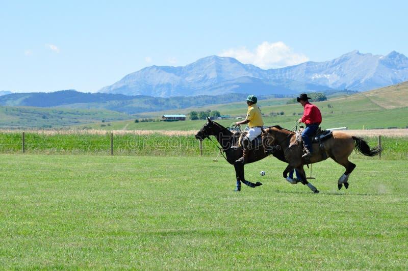 Polo på ranchen för stång U arkivbild