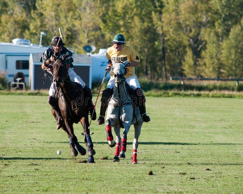 Polo på svarta Diamond Polo Club royaltyfri fotografi