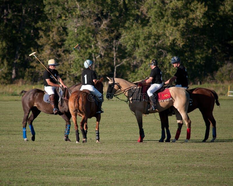 Polo på svarta Diamond Polo Club royaltyfria bilder