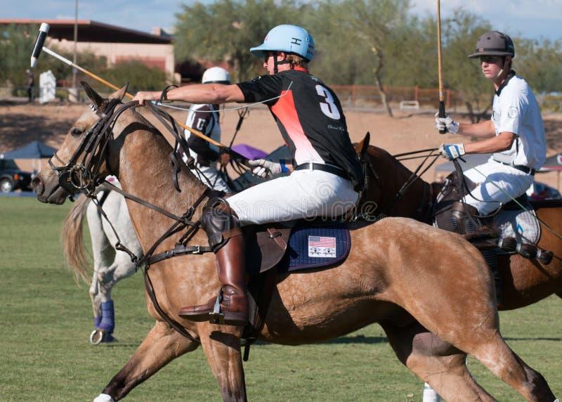 Polo Players et Polo Pony Horses image stock
