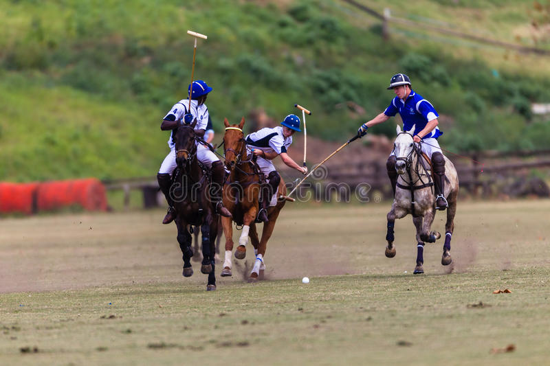 Download Polo Players Ponies Team Play Editorial Photography - Image: 33050887