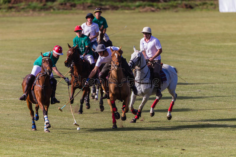 Polo Players Pony Action Sticksl. Chile polo players and local players charging for ball towards opponents goals in afternoon game at Shongweni equestrian venue royalty free stock photos