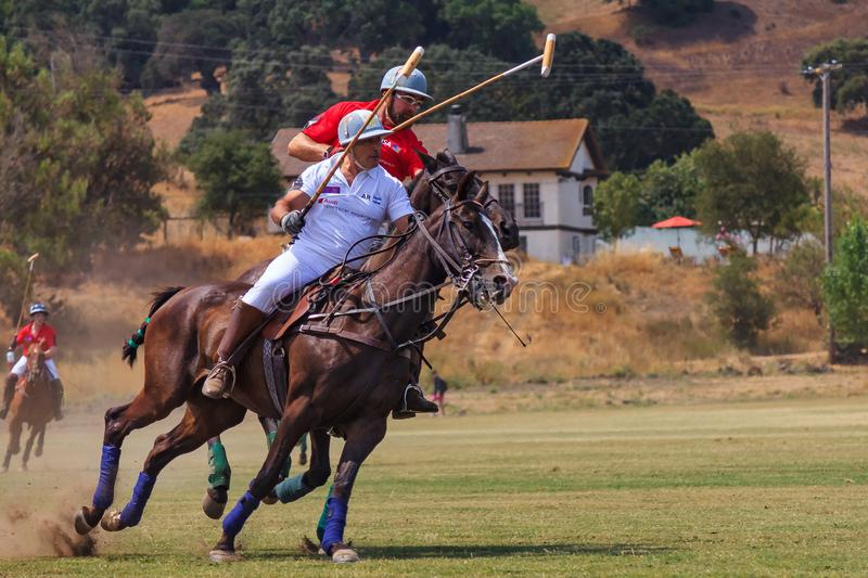 Polo players riding on horseback after the polo ball at high speed. Santa Rosa, United States - August 03, 2014: Polo players on the field riding on horseback stock image