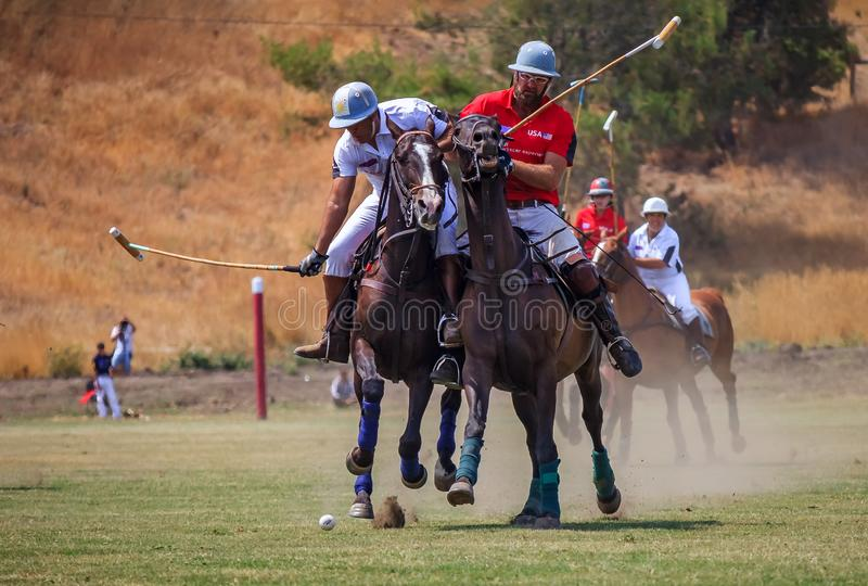 Polo players riding on horseback after the polo ball at high speed. Santa Rosa, United States - August 03, 2014: Polo players on the field riding on horseback royalty free stock images