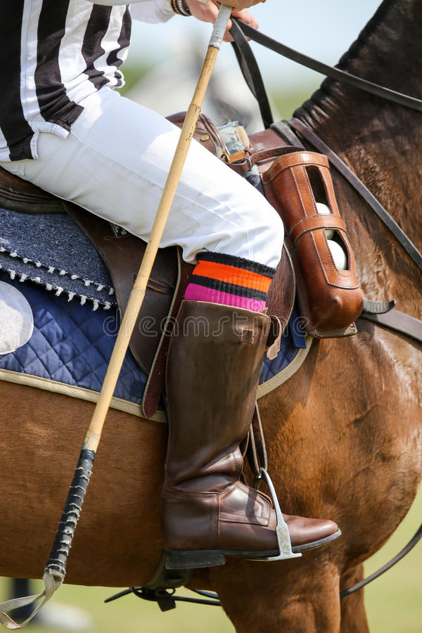 Polo referee. On a horse with a whip royalty free stock photography