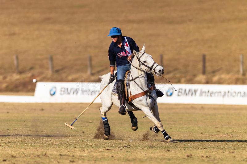 Polo Rider Horse Play Action arkivbild