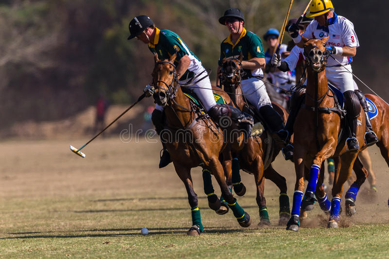 Polo Riders Horses Play Action fotografie stock