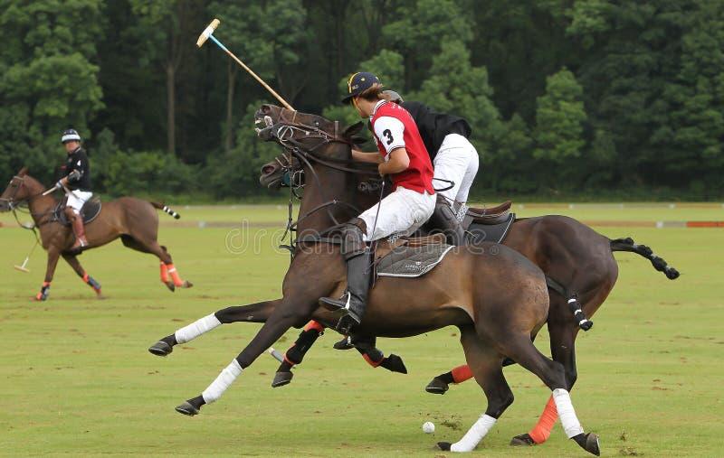 Polo Sports royalty free stock photo