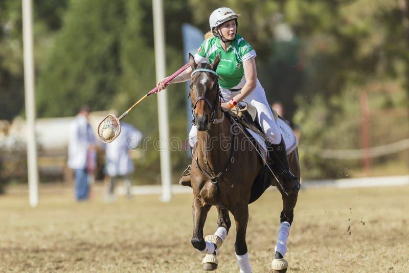 PoloCrosse Horse Rider Women Ireland royalty free stock photos