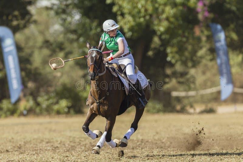 PoloCrosse Horse Rider Women Ireland stock photo
