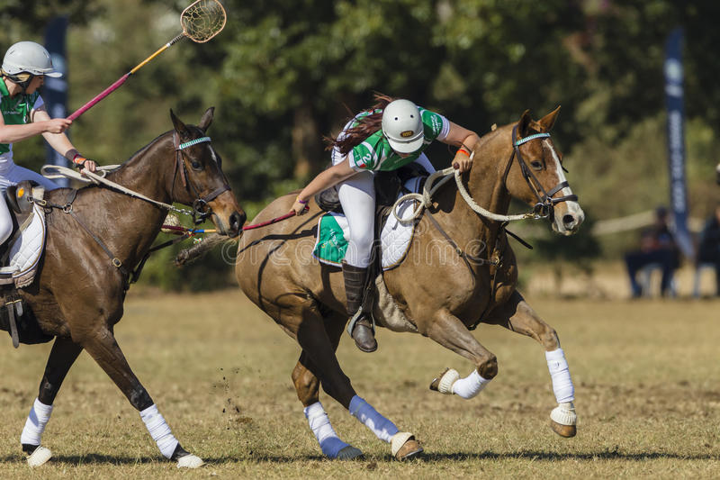 PoloCrosse Horse Riders Women Action stock images