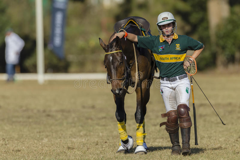 PoloCrosse Horse Women Action stock images