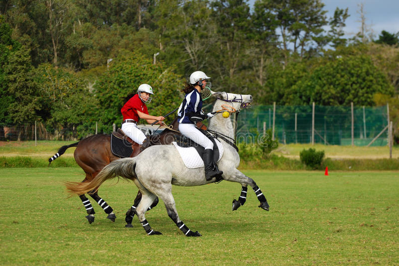 Polocrosse players on their horses