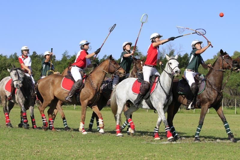 Polocrosse Team Line Up royaltyfri bild