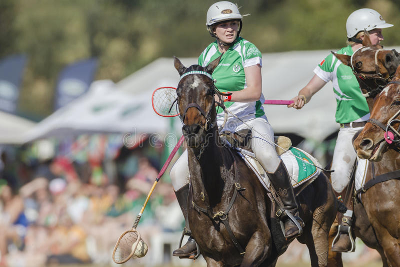 PoloCrosse World-Cup Horses Women Ireland royalty free stock image
