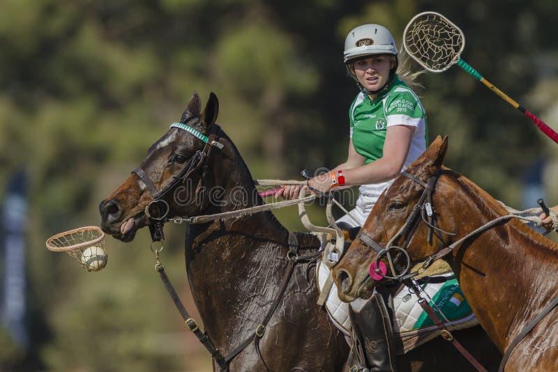 PoloCrosse World-Cup Horses Women Ireland stock image