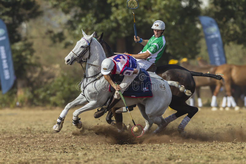 PoloCrosse World-Cup Rider Action stock images
