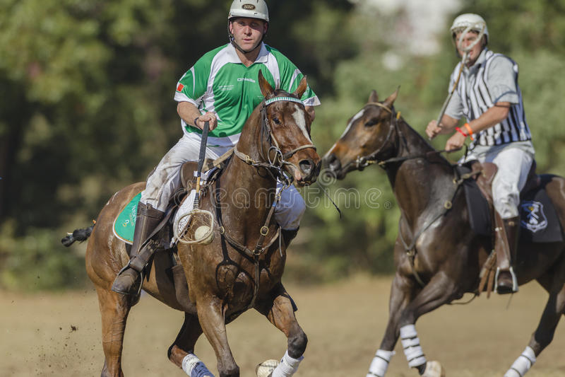 PoloCrosse World-Cup Rider Ireland stock image