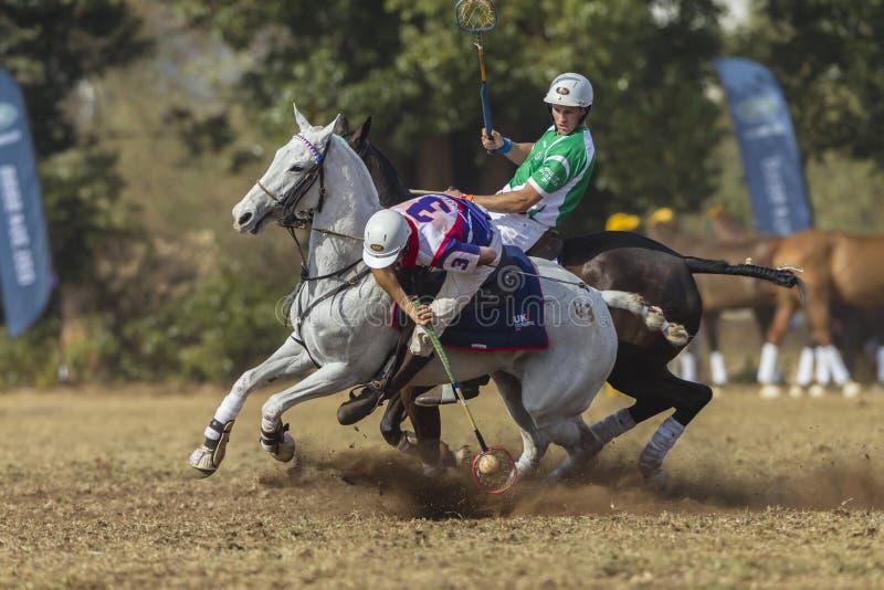 PoloCrossewereldbeker Rider Action stock afbeeldingen