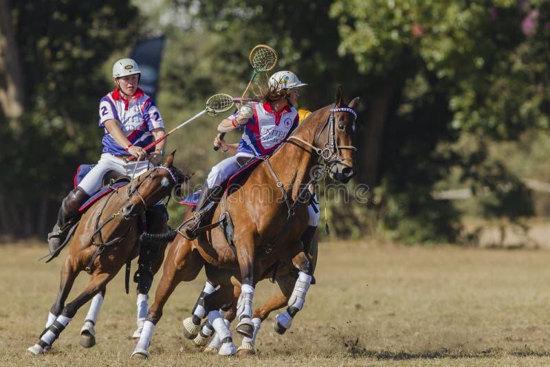PoloCrosseworldcup Actie stock afbeeldingen