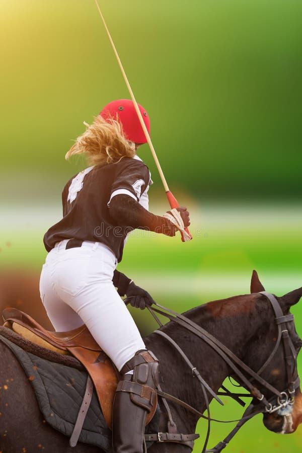 Polokvinnaspelaren rider på en häst royaltyfri foto