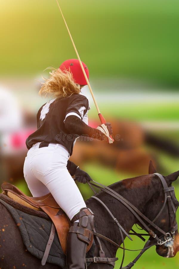 Polokvinnaspelaren rider på en häst royaltyfri fotografi