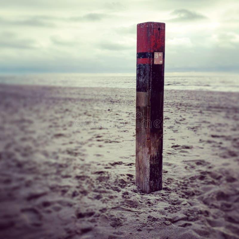 Polonais à la plage photo stock